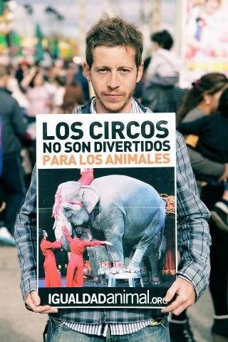 Igualdad Animal / Animal Equality Mañana sábado 20 de abril a las 17:30 horas Igualdad Animal realizará una protesta en Sevilla contra el uso de animales en los circos. Para participar ponte en contacto con nosotros escribiendo a: conchiP@igualdadanimal.org ¿Compartes? ¡Gracias! www.Facebook.com/IgualdadAnimal
