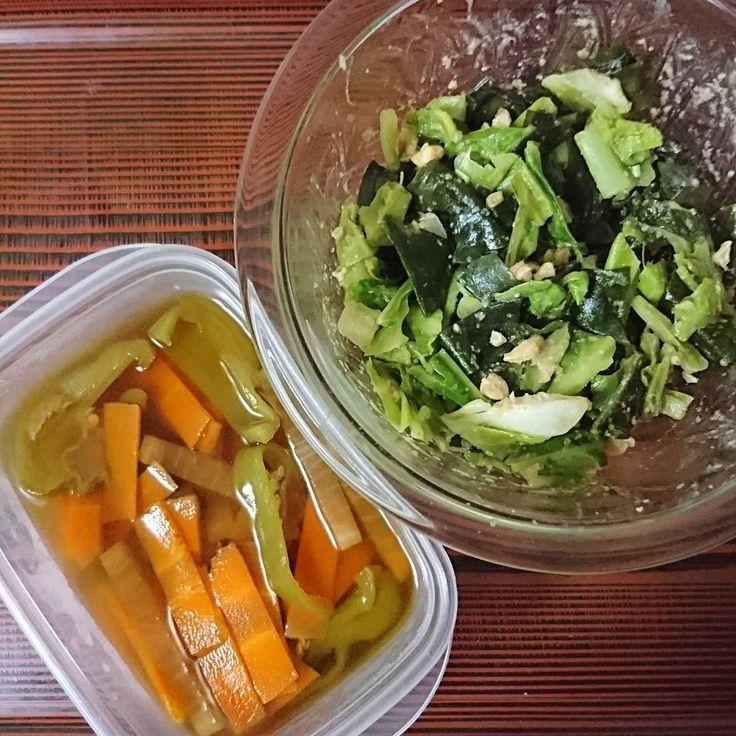 いいね!66件、コメント1件 ― Dg7さん(@daigold7)のInstagramアカウント: 「・キャベツとわかめの胡麻酢和え(胡桃入り) ・ピーマン、人参、大根の煮物(酒と白だしで)  #作り置き #作り置きおかず #常備菜 #おつまみ #おかず #健康食 #ヘルシー #和食 #日本食…」