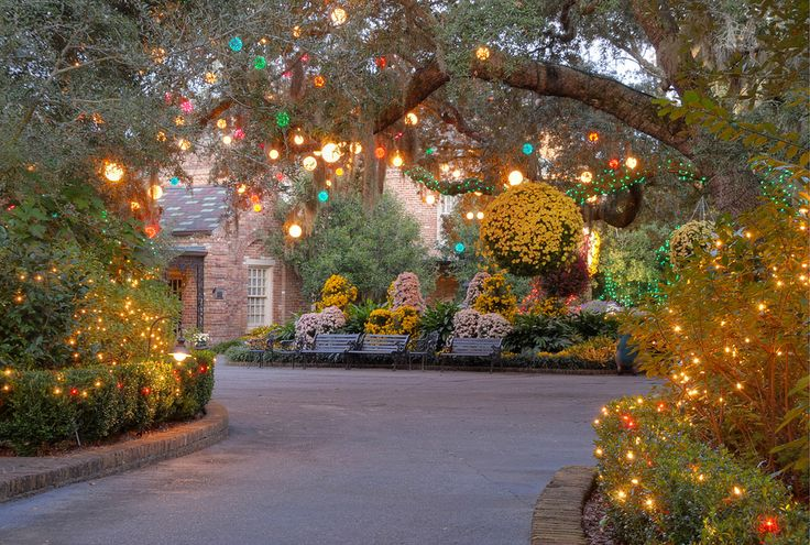 39 Best Magic Christmas In Lights Images On Pinterest Christmas Lights Christmas Rope Lights