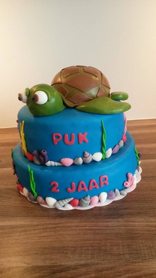 Schildpad taart / Turtle cake