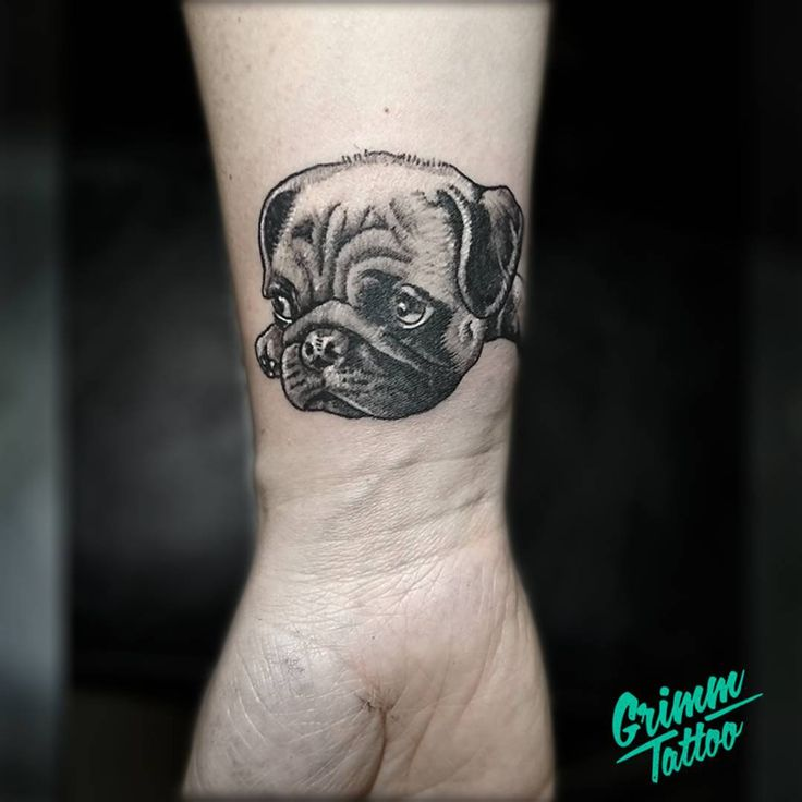 Pug tattoo. Dog tattoo. Small portrait tattoo. by Emre Dizici