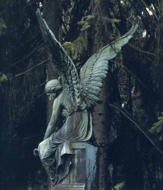 Angel …
