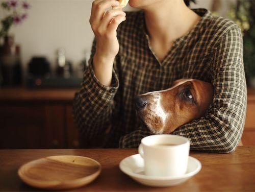 A cuddly coffee date