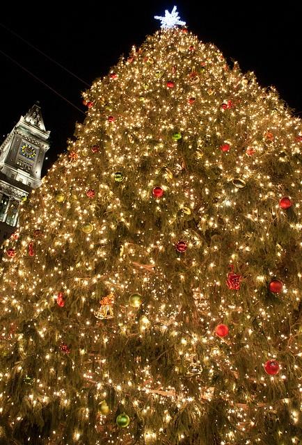 How To Set A Timer For Christmas Lightsxmass