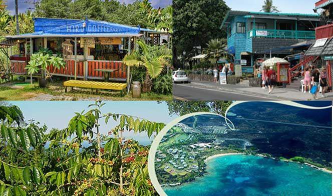 Kona finca de café, frente a la calle Kona-Kailua Kona y la bahía skyview