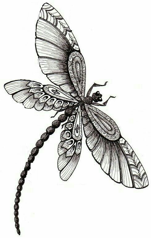 1316 best Coloring images on Pinterest Coloring pages, Print - best of coloring pages of rainbows to print
