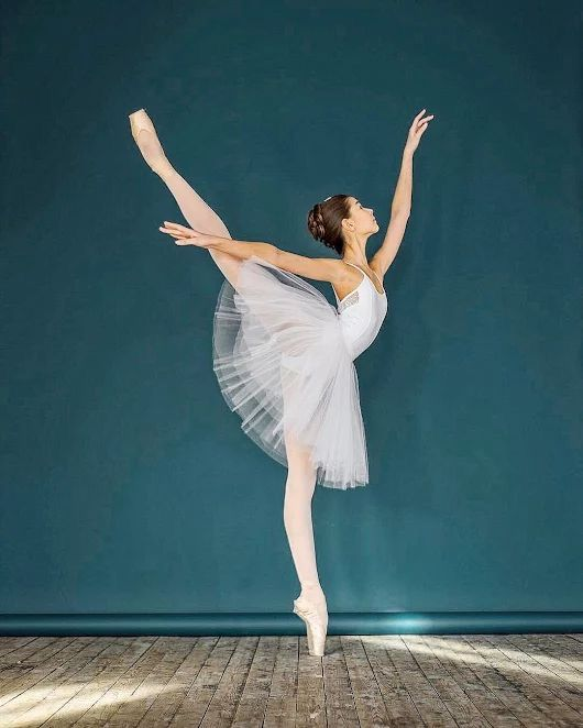 Wow! What a beautiful arabesque!