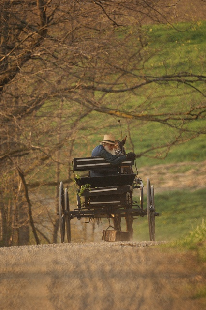 AmishAmish Transportation, Country Roads, Amish 2, Amish Wagon, Amish Life, Amish Country, Amish Buggy, Amish People, Country Drive
