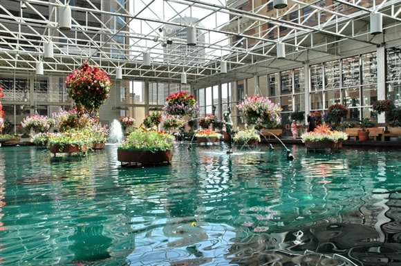 Calgary Downtown Core is filled with things to do. If you want a relaxing break, try the #Devonian Gardens. Recommended by Michelle, Our Assistant Controller.