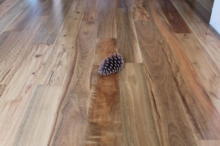 spotted gum flooring - Google Search