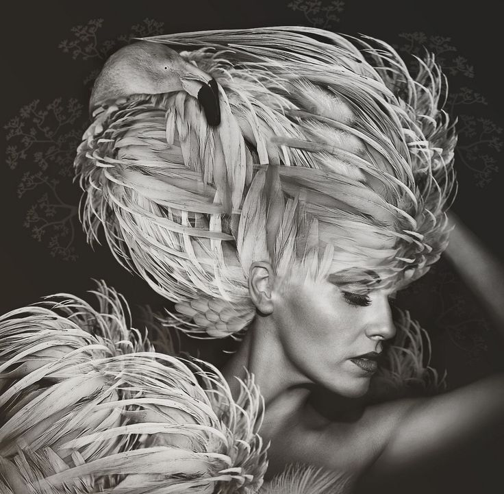 """""""Beauté Aviaire"""": Photographing Models and Birdlife on Separate Occasions by Lee Howell"""