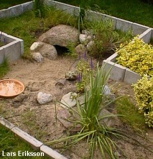 Outdoor Turtle House | Russian Tortoise Enclosures