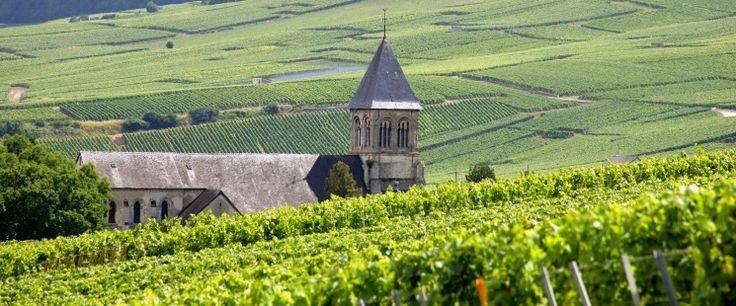 Wijn en toerisme een sprankelende combinatie in de Champagne