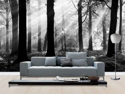 wall portraits living rooms. Modern Living Room Ideas with Full Wall Mural Art  wall prints Pinterest