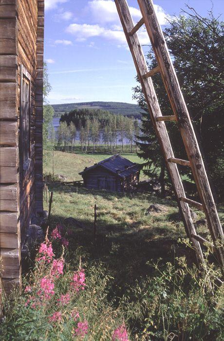 A summer day – Anundsjö, Ångermanland