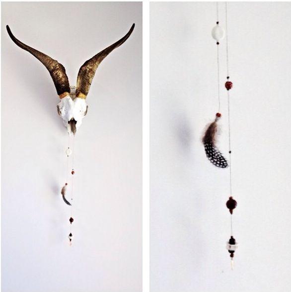 Natural Goat Skull