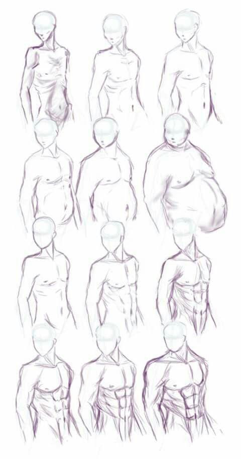Verschiedene Anatomie und Umfänge
