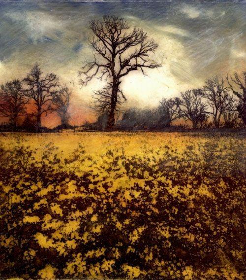 Jardine Gallery - Ian MacCulloch Illustration and Printmaking