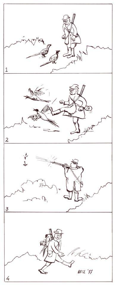 Deze strip verscheen in 'Mens & Vogel', 4/1977. Spijtig genoeg is de jacht op illegaal uitgezette fazanten nog steeds actueel.