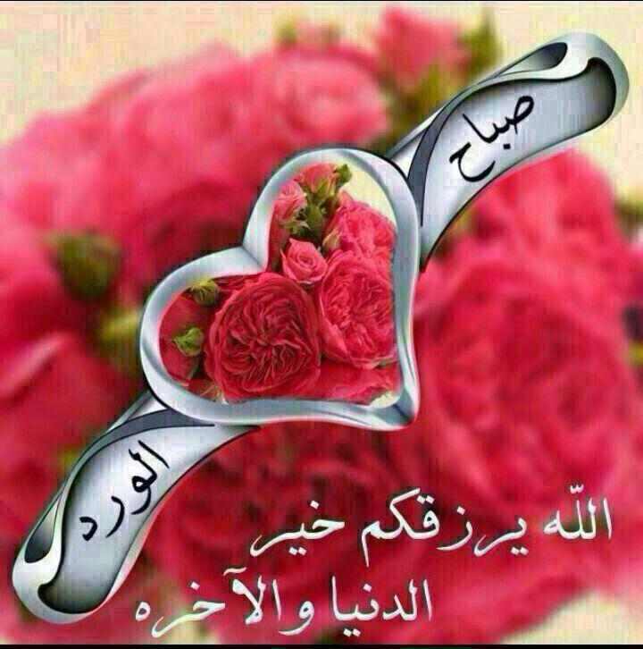 صور صباح الورد مع أجمل الكلمات والورود 2015 Good Morning صباح الخير Beautiful Morning Messages Good Morning Arabic Good Morning Beautiful Images