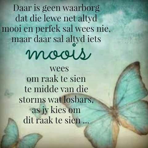 Moois