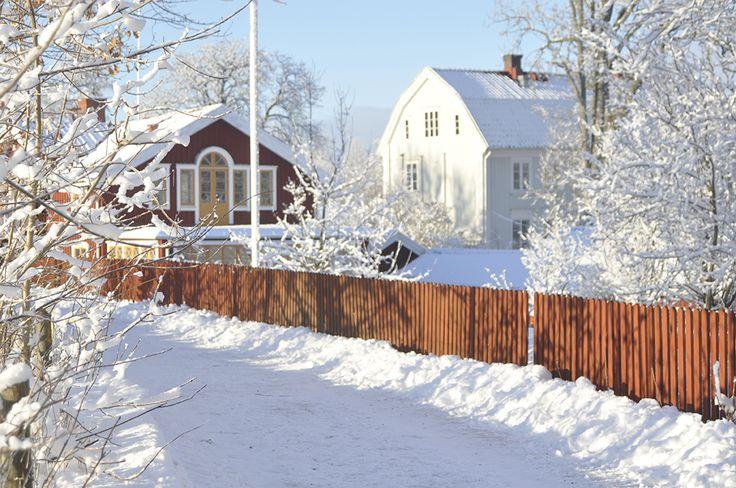Winterday at Stora Holms Säteri Photo M. Enderstein