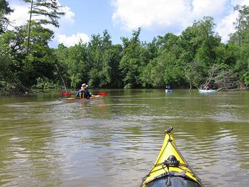 70 best images about texas rivers lakes on pinterest for Best fishing times texas