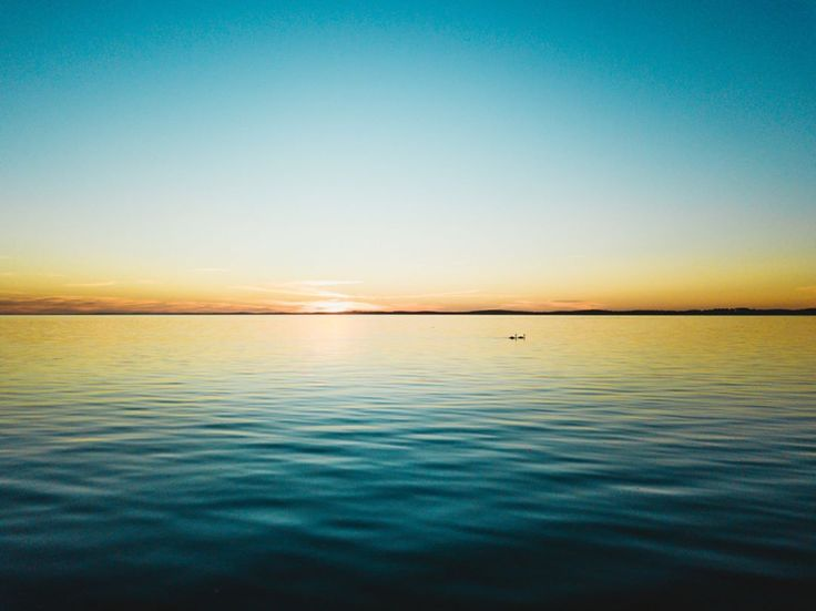 "180 mentions J'aime, 10 commentaires - DEFTOM (@deftom_filmaker) sur Instagram: ""ABOVE THE WATER . . . . #lifeofadventure #folkmagazine #exklusive_shot #theglobewanderer…"""