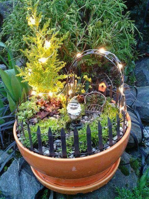 Miniature Gardens Of Bonsai Trees ᴷᴬ