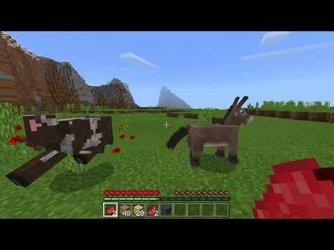 http://minecraftstream.com/minecraft-gameplay/gintsteake-teaches-how-play-minecraft-gameplay-part-1/ - Gintsteake teaches how play Minecraft Gameplay part 1  Welcome to my new series of Minecraft were I'll play and tell funny stuff to you guys and I AM NOT A NUB okay I made a bed first before a house because of mobs.  BTW you guys are awesome.