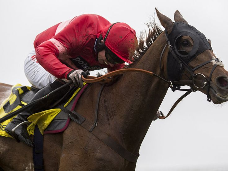 Conti set to swerve King George  https://www.racingvalue.com/conti-set-to-swerve-king-george/