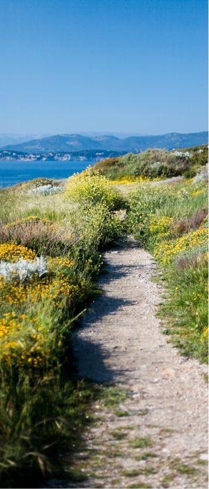 Découvrez l'île des Embiez, au large de Six-Fours-Les-Plages : Paul Ricard, Provence