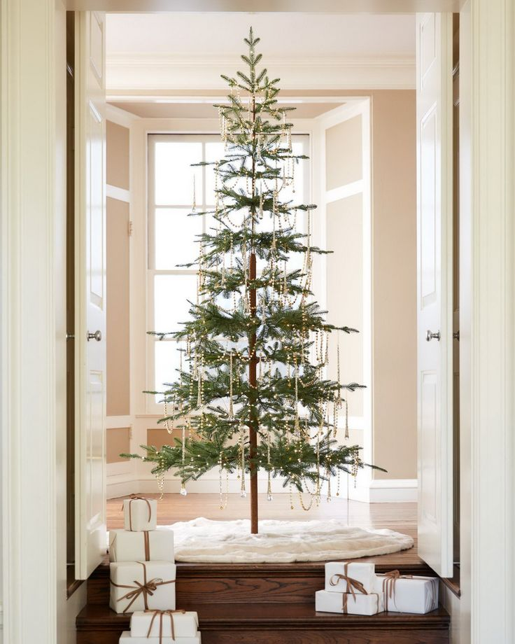 25 Unique Alpine Christmas Tree Ideas On Pinterest Simple