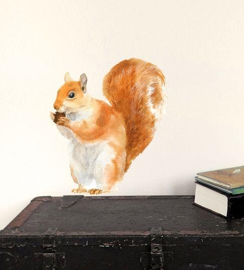 """Naklejka tkanina na ścianę """"Red Squirrel"""""""