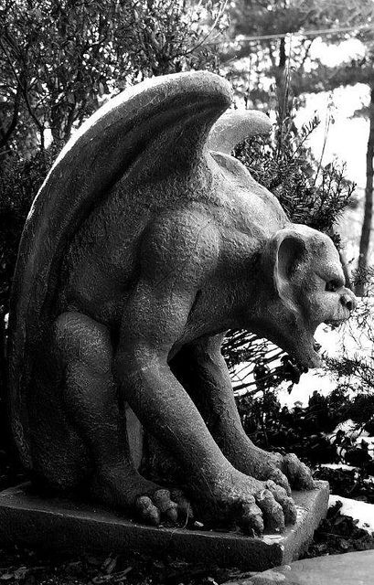 Gargoyle ... would love to have this guy out in the garden with George, Buddha, and the flamingos.