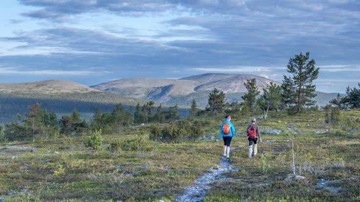 Hike over fell Kukastunturi