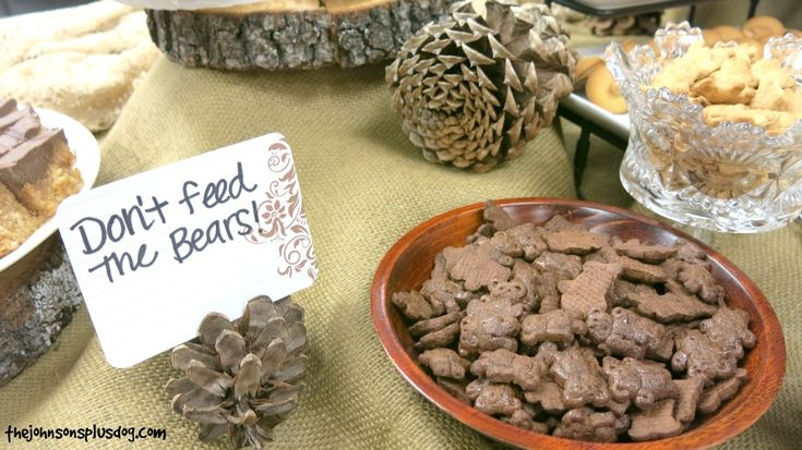 Teddy Grahams - Don't feed the bears - Cute idea for rustic forest shower
