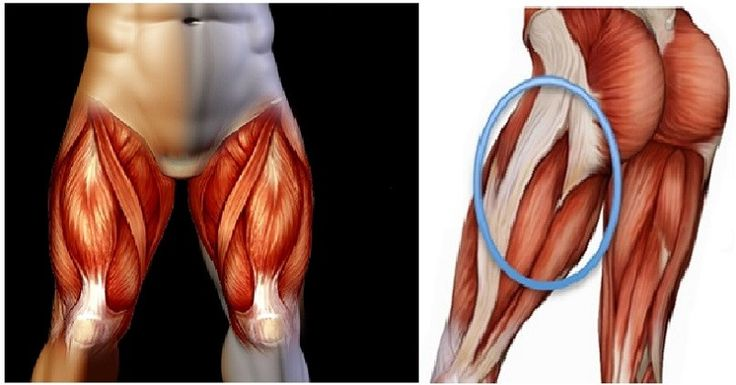 21 best images about Glutes on Pinterest   Heavy weights, The very ...