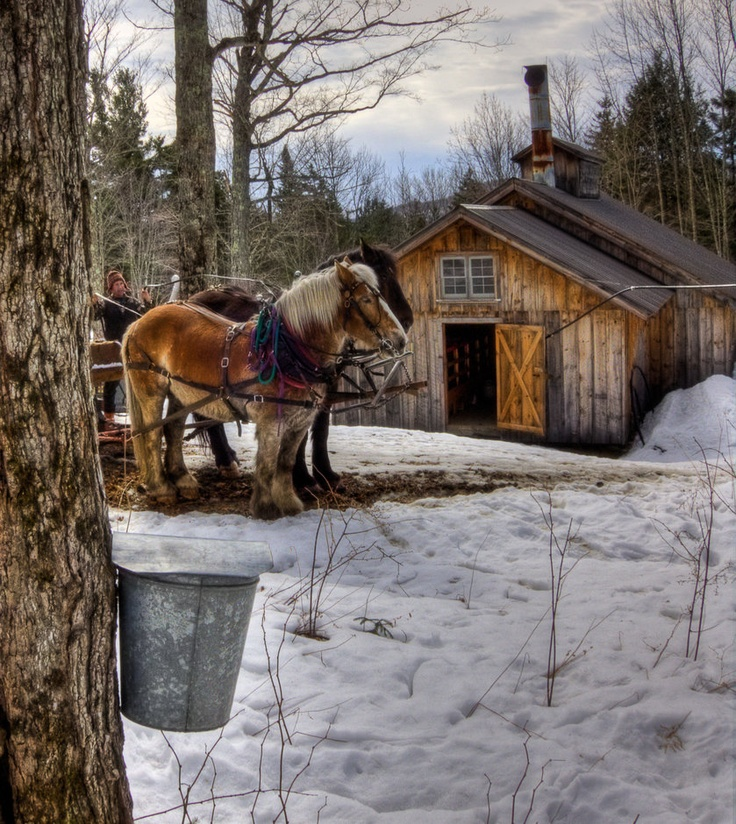21 Best Images About Cabane A Sucre On Pinterest