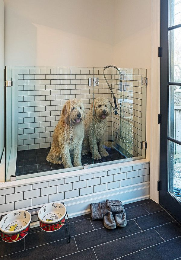 If your laundry room connects to the outside, prevent dogs from tracking in dirt and mud with built-in dog showers like this one.