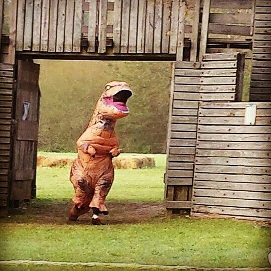 Crazy T-Rex Inflatable Costume antics  https://youtu.be/8Ux4j3trf3U  https://youtu.be/4rSeon0M8hM  Just a couple of the videos out there!  Imagine what you can do in your Inflatable T-Rex Costume!  Contact us at 585-482-8780 for more information or order on our website www.arlenescostumes.com  #trex #jurassicworld #inflatablecostume #inflatable #rubies #familyreunion #corporate #fundraiser #graduationparties