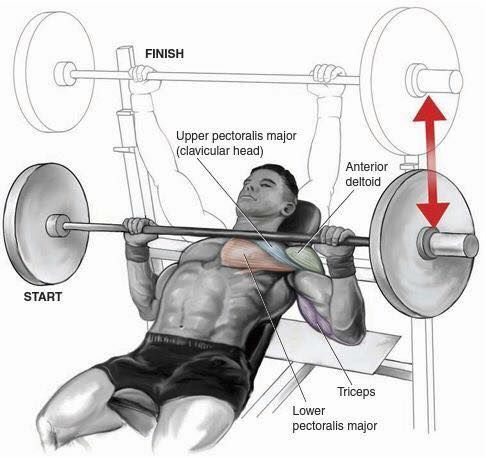 Chest Exercises ! 4 Sets 10/12 Reps