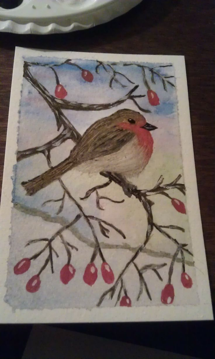 robin postcard, in watercolours and other media