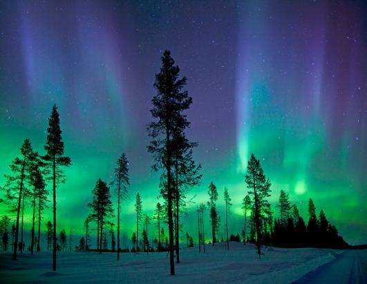 Aurora Borealis (northern lights) in the night sky over Denali National Park,  Alaska