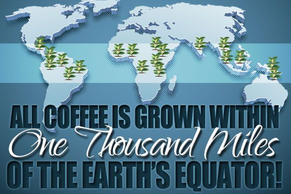All Coffee is Grown by the Equator