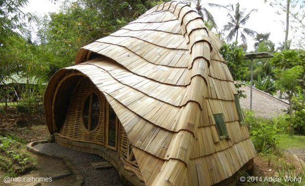 This is one of nine homes each of which use different natural materials for their roof demonstrating the material's versatility, and in many cases longevity, up to 400 years. Find out about them at www.naturalhomes.org/natural-building-roof.htm