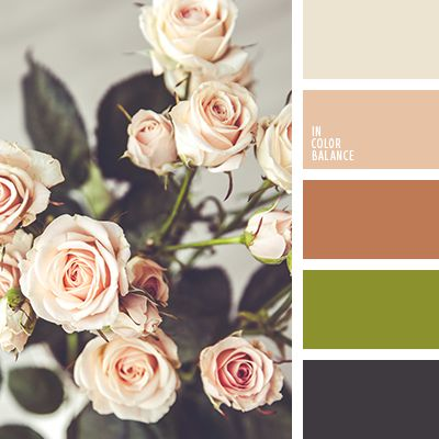 """""""пыльный"""" зеленый, бежевый, кремовый, кремовых роз, оливковый, оттенки кремового цвета, подбор цвета для дома, почти-черный, салатовый, тёмно-зелёный, цвет розы, черный."""