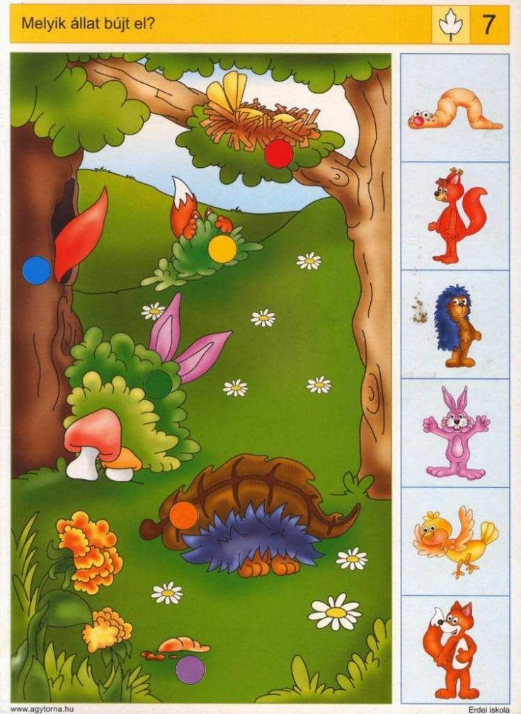Piccolo: blad kaart 7