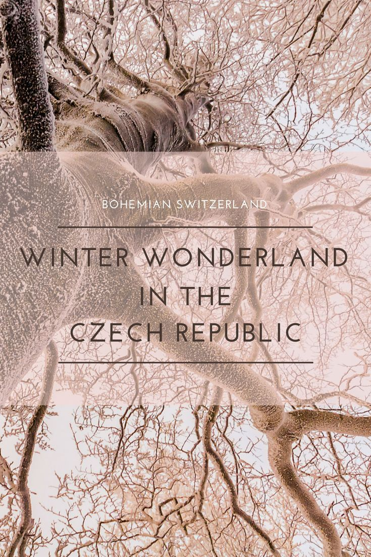 Hiking in the Czech Republic! Explore this winter wonderland in Bohemian Switzerland National Park in the northern region of the Czech Republic on a day trip from Prague! Includes breathtaking views of the sandstone formations where the Chronicles of Narn
