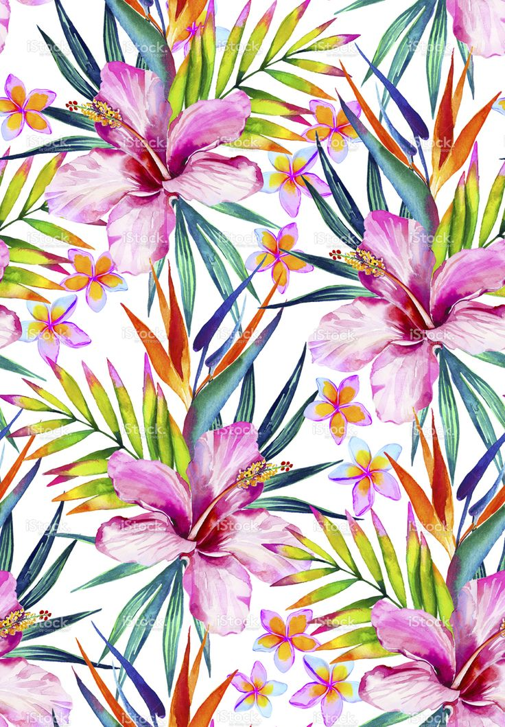 beautiful seamless pattern with hibiscus, frangipani and palm leaves.